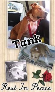 RIP Tank